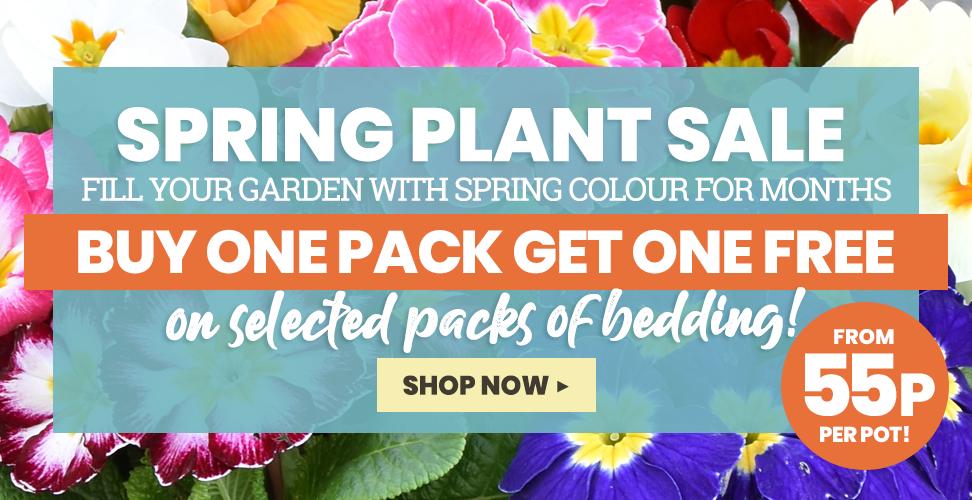 The Dobies Spring Plant Sale