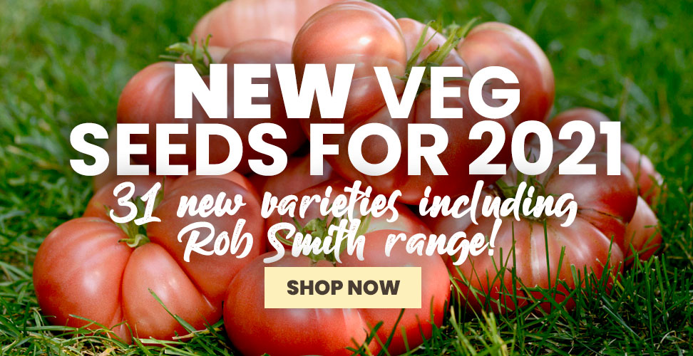 View Our New Veg Seed Range